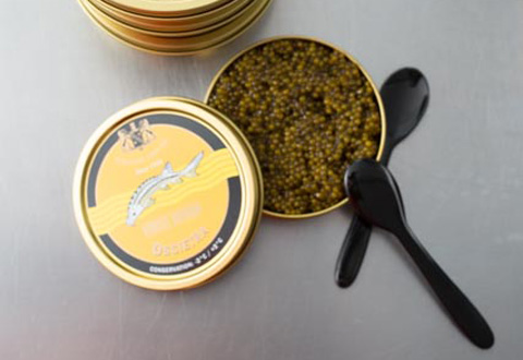 jre_gn_Caviar_House_Prunier_FE_H1_7540_low-slider
